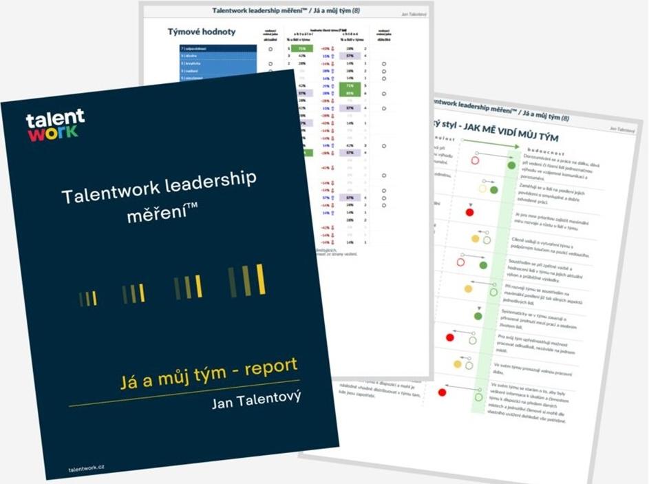 Autentický lídr – nabídka podrobné analýzy
